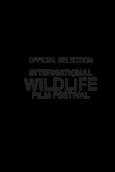 International Wildlife Film Festival 2019