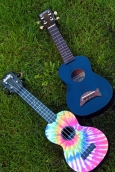 Ukuleles on the Library's Lawn