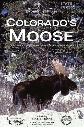 Colorado's Moose