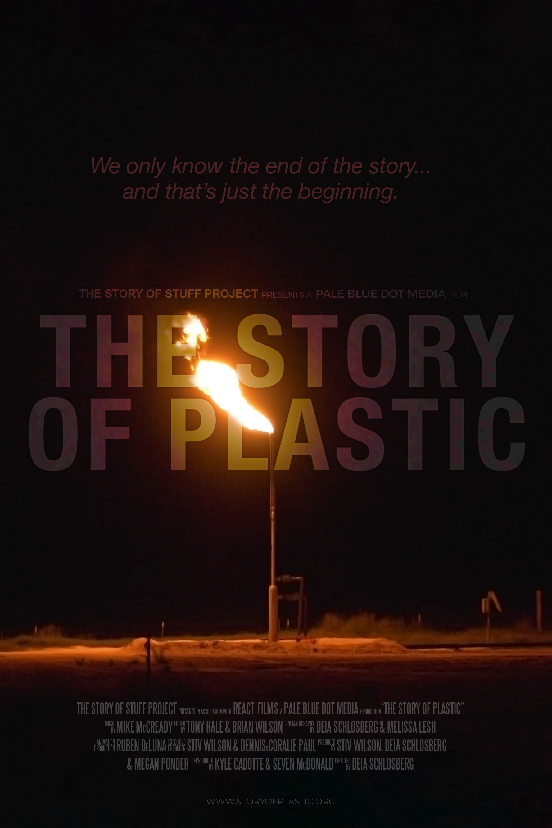 Story of Plastic Poster