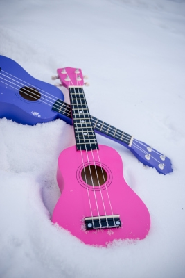 Ukuleles in the Snow
