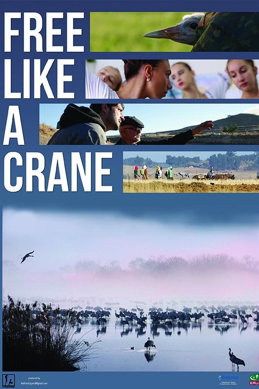 Free Like a Crane